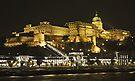 Royal Palace, Budapest at night by Graeme  Hyde