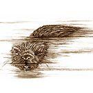A Little Otter! by sharpie