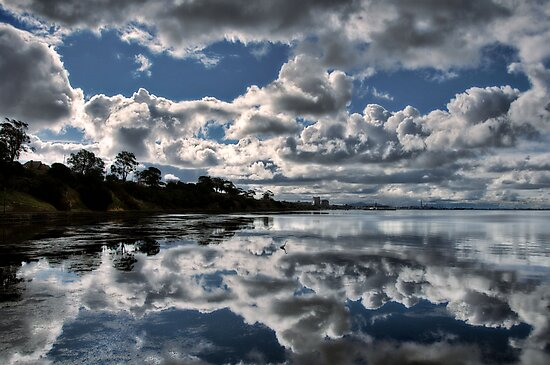 Contrast Reflection by Heather Prince