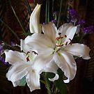 Flowers by TonySlattery