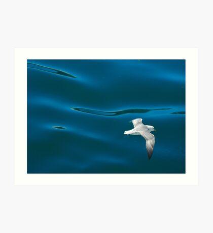 Sea Blues Art Print