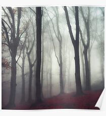 bonds - forest on a fog day in fall Poster