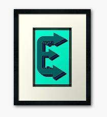 The Alphabet  The letter E Framed Print
