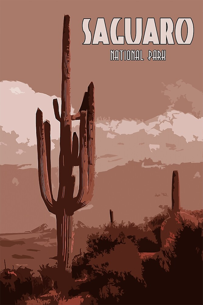 Saguaro National Park Panorama by Andrea Mazzocchetti