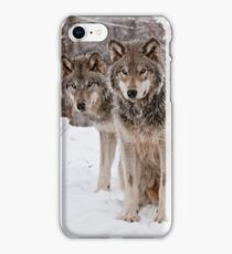 Timber Wolf Pair iPhone Case/Skin