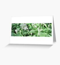 www.lizgarnett.com - valley - May03 Ramsons Greeting Card