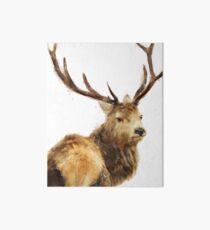 Winter Red Deer Art Board Print