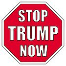 STOP TRUMP NOW by Mark Podger