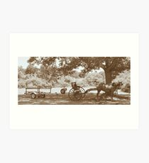 Amish Boat Trailer Art Print
