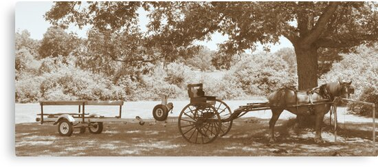Amish Boat Trailer by Ann Rodriquez
