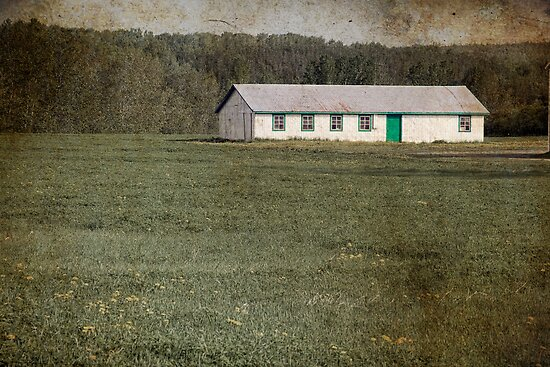 Old-fashioned Farm Shed by Gino Caron