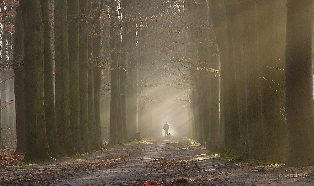 Walking the dog on a misty day by jchanders