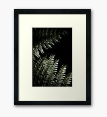 Grow In Darkness Framed Print