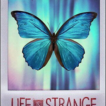Life is Strange Butterfly Photo by Grundelboy