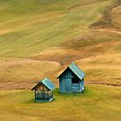Shelters by Arie Koene