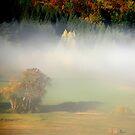 Beautiful Autumn by Imi Koetz