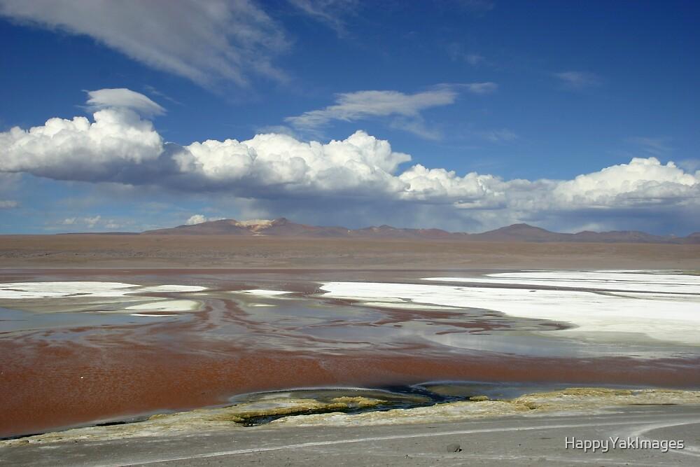 Laguna Colorada by HappyYakImages