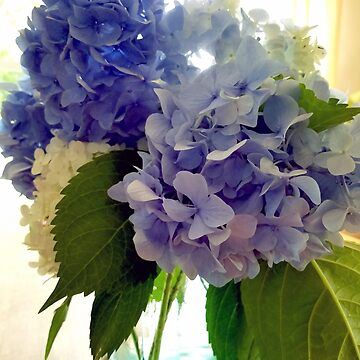 Blue Hydrangea Bouquet by BettyMackey