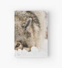 Whose The Pretty Puppy? Hardcover Journal