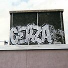 cerza 1996 by John farthing