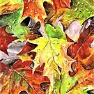Autumn Leaves with Raindrops, Fall Watercolor Painting by birdsandberry