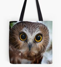 Northern Saw Whet Owl Portrait Tote Bag