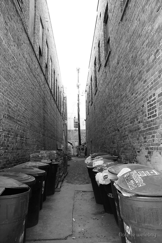 Urban Excess by florene welebny