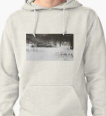 old deserted orchard Pullover Hoodie