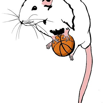 Basketball Rat by teaandink