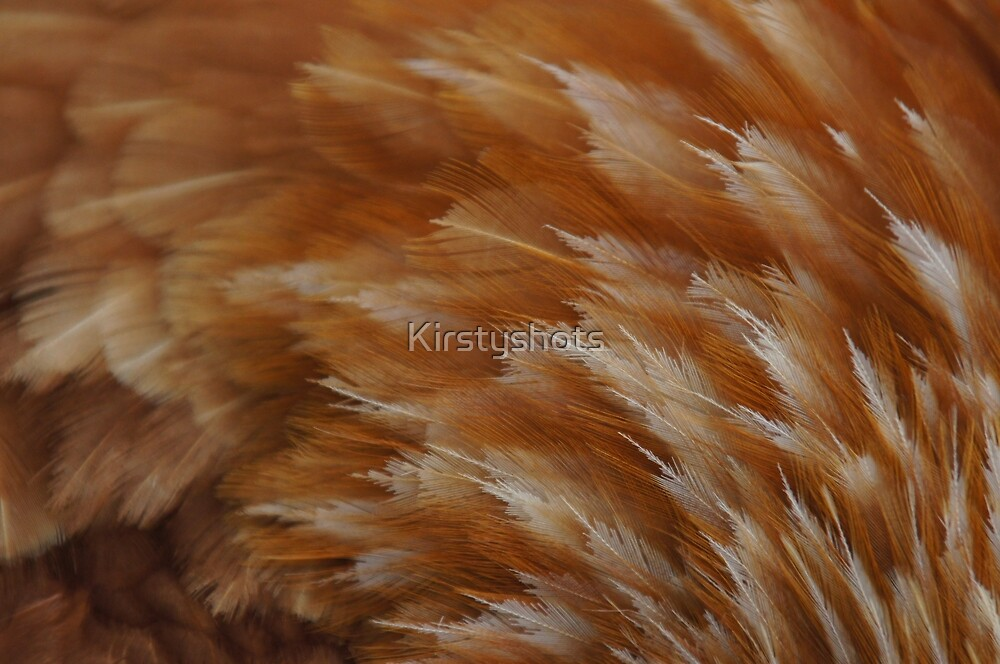Feather Wave by Kirstyshots