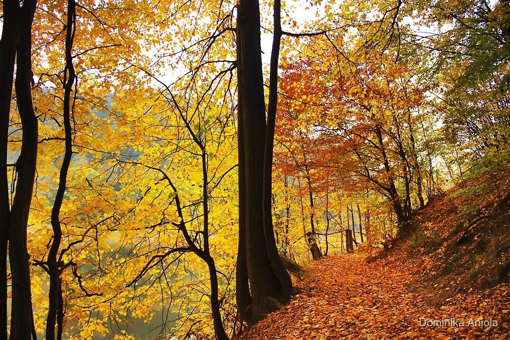 Autumn 4 by Dominika Aniola