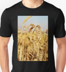 Ripe wheat ears on field. T-Shirt