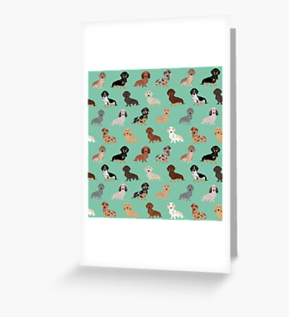 Dachshund dog breed pattern dapple merle black and tan coat colors Greeting Card
