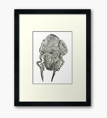 Plo Koon Framed Print
