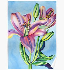 Colorful Lilies Poster