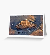 Stranded Jellyfish Greeting Card