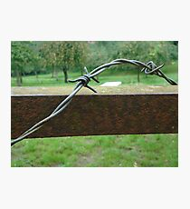 barbed wire on gate Photographic Print