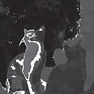 Galaxy Cat by Conspurgatory