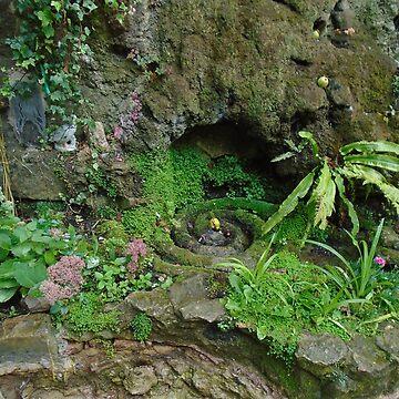 White Spring Garden, Glastonbury by MadeInStreet