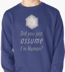 Did You Just Assume I'm Human? Pullover