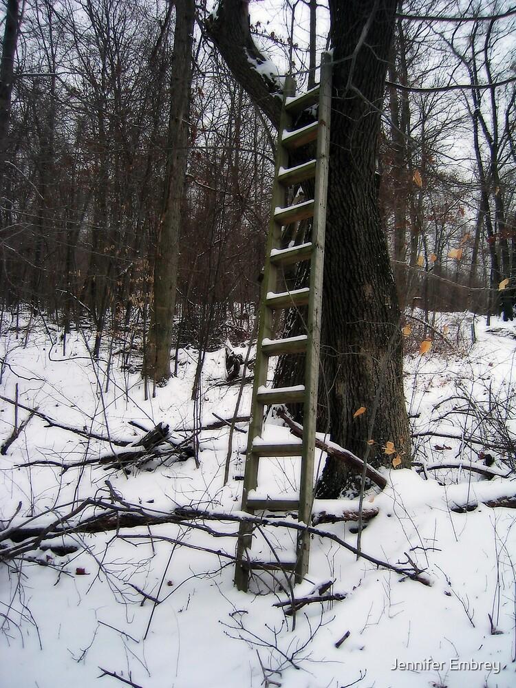 Snowy Ladder by Jennifer Embrey