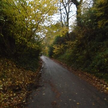 Bulwark Lane in Autumn by MadeInStreet