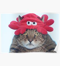 Why is there a crab hat on my head? Poster