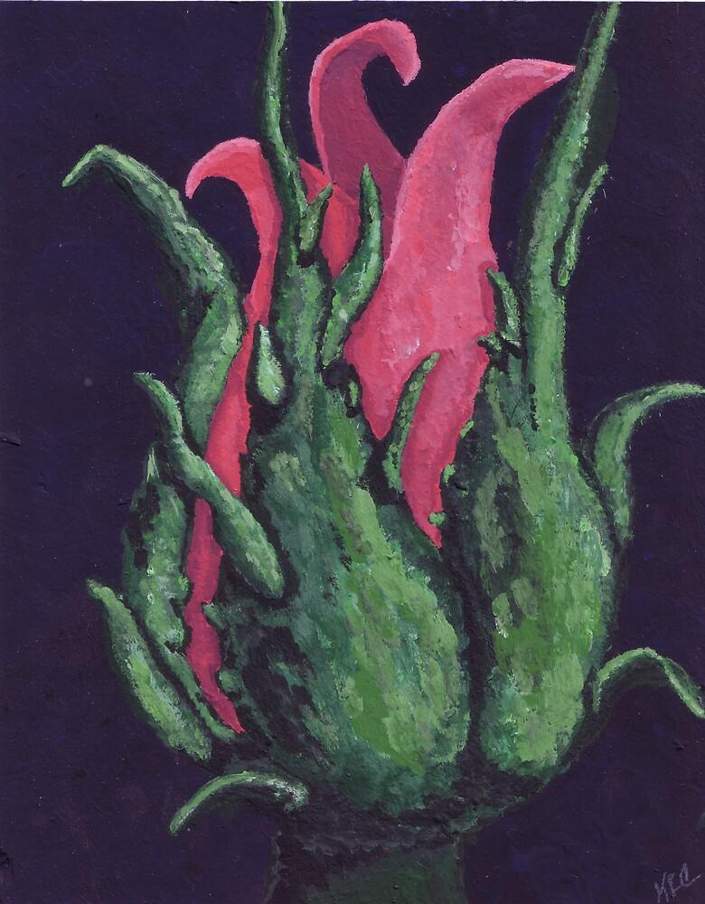 Red Rosebud by Karirose