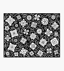 Summer Flowers Black and White Photographic Print