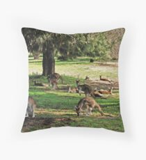 Kangaroos galore Throw Pillow