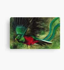 Animal Abstractions: Quetzal Canvas Print