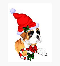 Boxer with Santa Hat Christmas Gifts Photographic Print