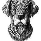 «Labrador» de BioWorkZ