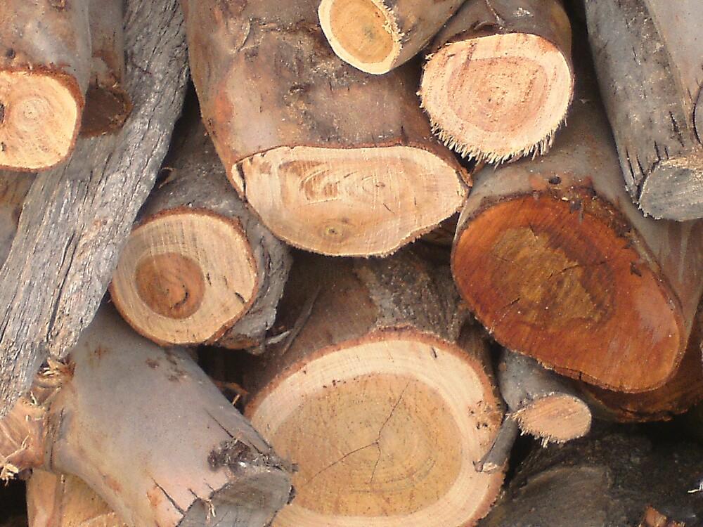 Logs! by MaddyPaddy